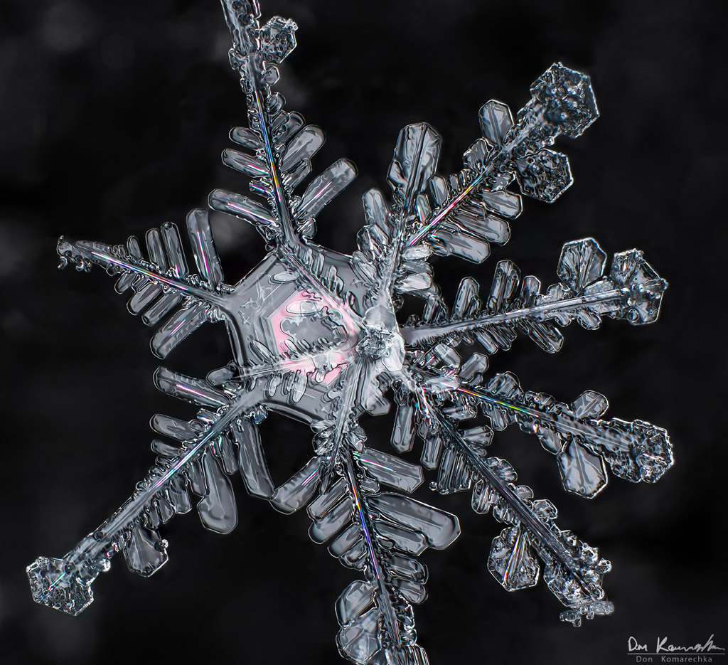 IMAGE: http://donkom.ca/potn/snowflakes/DKP_1853.jpg