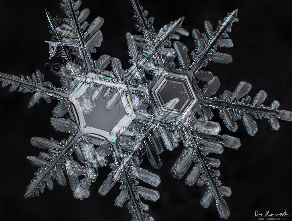 IMAGE: http://donkom.ca/potn/snowflakes/DKP_9634.jpg